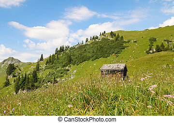 Wooden barn in wildflower meadow - A small wooden barn in...
