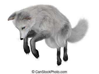 Arctic Fox - 3D digital render of an arctic fox isolated on...