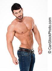 pelado, homem,  torso,  Muscular, bonito
