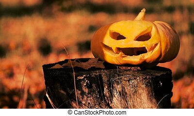 Jack o lantern carved pumpkin halloween on a stump - Scary...
