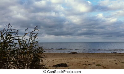 Beach autumn timelapse - Timelapse beach in autumn overcast...