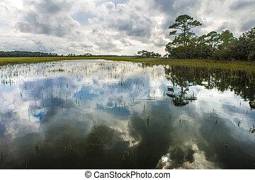 coastal estuary in South Carolina