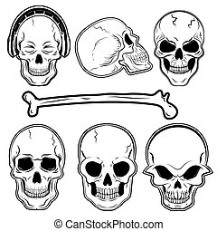 Human skulls set - Set of the human skulls in vector