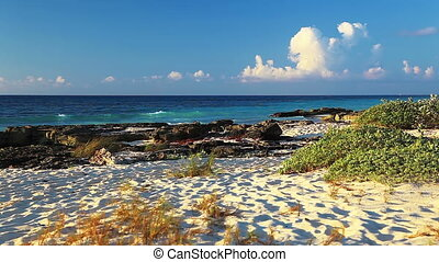 Scenic Beach - Scenic wild beach of the Caribbean sea. Playa...