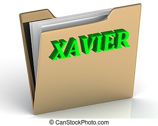 XAVIER- bright green letters on gold paperwork folder on a...