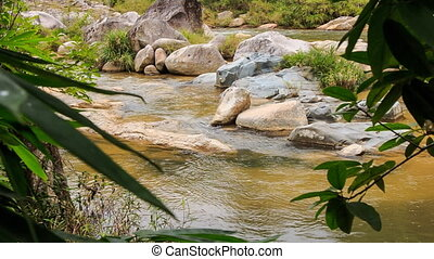 view of mountain stream through plant branches in park -...