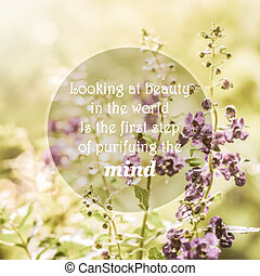 Meaningful quotes on purple flowers in meadow under...