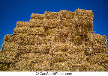cereal bales of straw - bales of grain after harvesting a...
