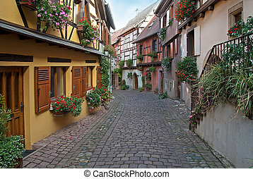 narrow street - View of a typical Alsace paved street