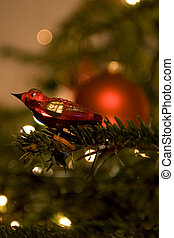 Bird in christmas tree - Holiday background with bird in...