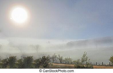 Winter sun in foggy landscape - Winter sun shines through...