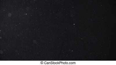 flour dust particles on black background