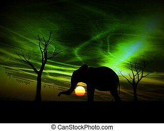 Elephant Sunrise - An image of an elephant silhouette with a...