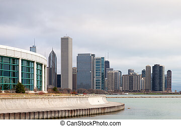 Chicago Skyline and Shedd Aquarium - Chicago Skyline on a...
