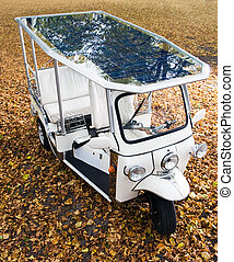 Solar powered tuc tuch parked on an autumn leaf coverd spot...