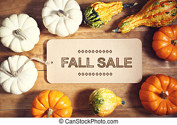 Fall Sale message with colorful pumpkins and squashes