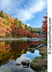 Colorful Autumn Leaf and River with blue sky in korankei,...