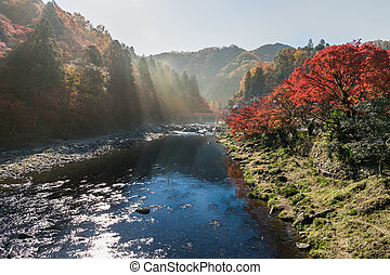 Sunlight over river with Colorful Autumn leaf