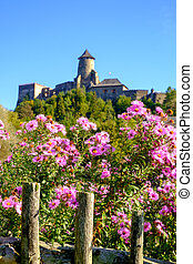 Beautiful colorful flowers and old historical castle in...