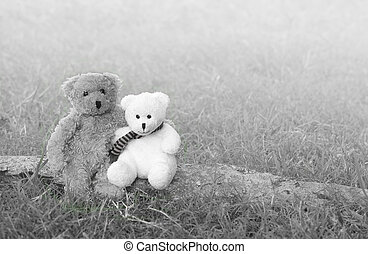 Two teddy bears hugging and sitting on the timber in meadow,...