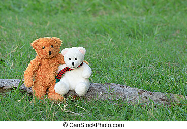 Two teddy bears hugging and sitting on the timber in meadow