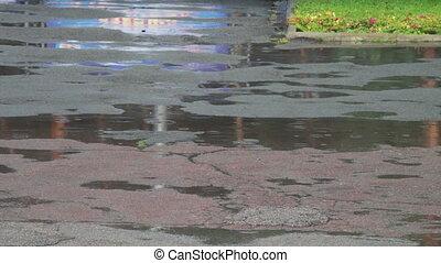 Rain drips through the puddles - Summer rain drops falling...