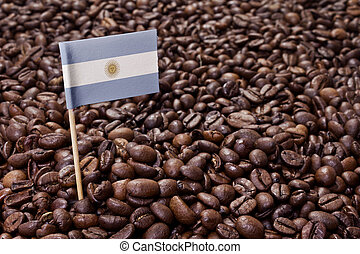 Flag of Argentina sticking in coffee beans.(series)