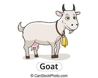 Goat animal cartoon illustration for children - Goat animal...