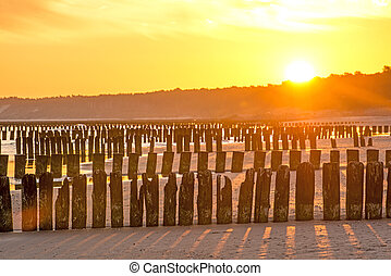 Sunrise over the Baltic Sea with groynes