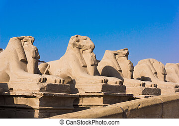 Sphinx Avenue in Luxor Amun Temple of Luxor Egypt