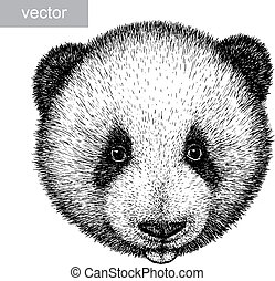 engrave panda bear illustration - engrave isolated panda...