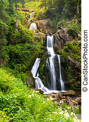 Triberg waterfalls - Triberg Falls is one of the highest...