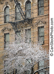 Chelsea Building and Snow Covered Tree, Winter Storm, New...