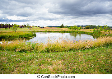 Country Fish Pond - Pond in the country on a large property...
