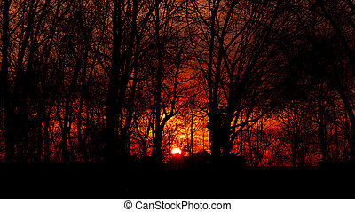 sky's on fire - skiy on fire during sunset