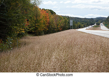 Road in autumn - Road in New Hampshire and the forest at...