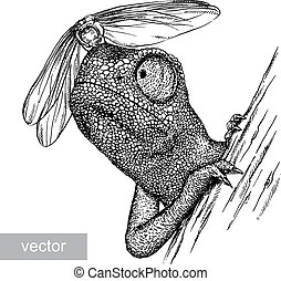 engrave chameleon illustration - engrave isolated chameleon...