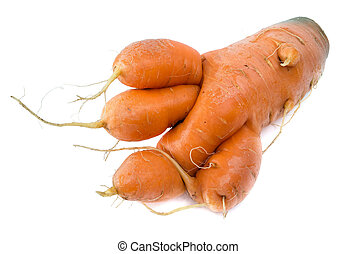 Carrots bizarre like a beastly paw