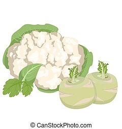 Cabbage and cauliflower on a white background Healthy food