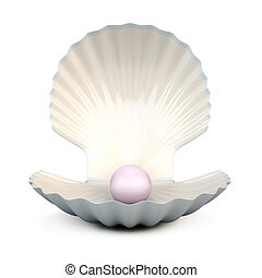 Shell pearl on a white - Shell pearl isolated on white...