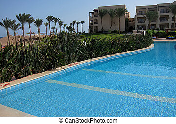 pool and many birds of paradise in Egypt - nice pool and...