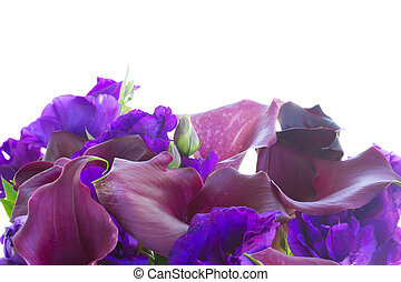 Calla lilly and eustoma flowers border isolated on white...