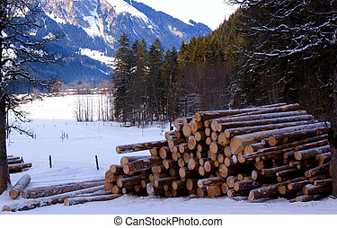 Woodpile - A woodpile between the mountains