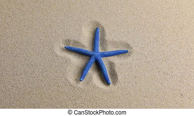 Approximation of starfish lying on the sand