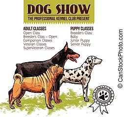 Dogs Show Illustration - Dogs show with sketch doberman...
