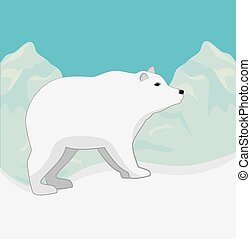 Arctic bear animal