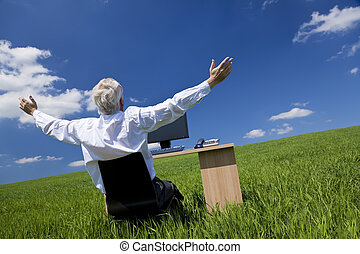 Businessman Celebrating Arms Raised At Desk In Green Field -...
