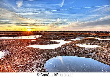 oyster beds, hdr - hdr image of oyster beds at low tide in...