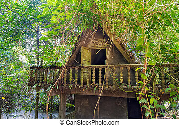 bungalow, resort tropical rainforest - jungle