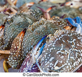 Assorted crabs - Flower crab, Blue crab, Blue swimmer crab,...